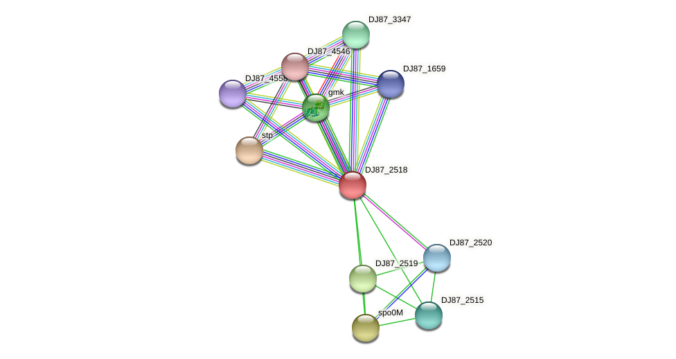 DJ87_2518 protein (Bacillus cereus) - STRING interaction network
