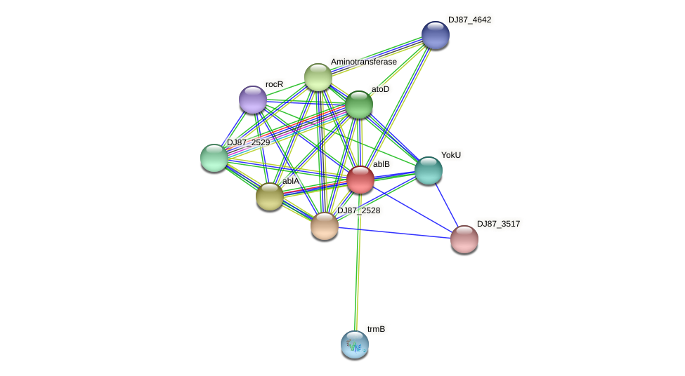 ablB protein (Bacillus cereus) - STRING interaction network
