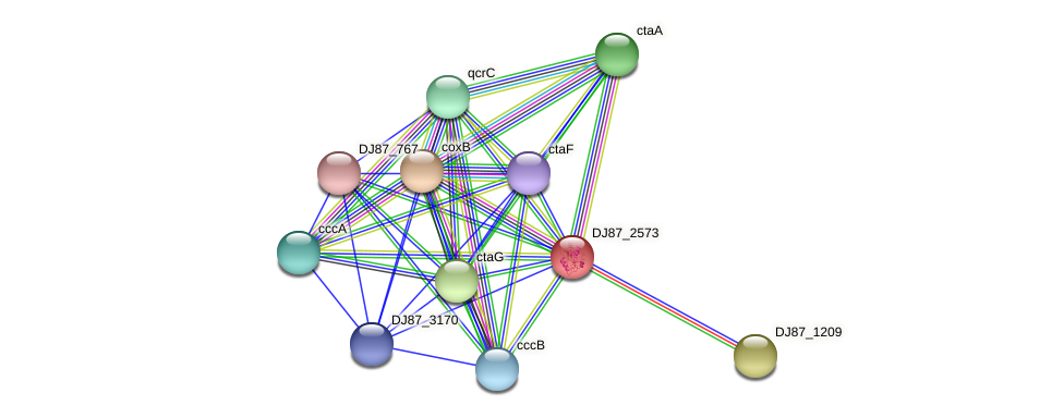 ypmQ_1 protein (Bacillus cereus) - STRING interaction network