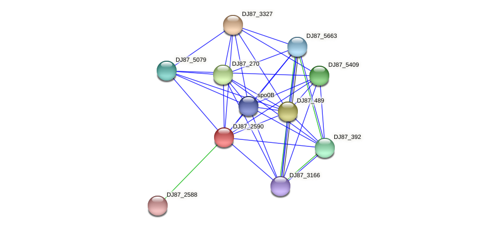 DJ87_2590 protein (Bacillus cereus) - STRING interaction network