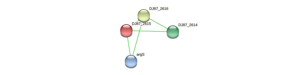 DJ87_2615 protein (Bacillus cereus) - STRING interaction network