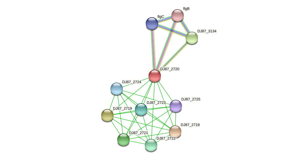 DJ87_2720 protein (Bacillus cereus) - STRING interaction network