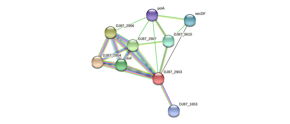 DJ87_2903 protein (Bacillus cereus) - STRING interaction network