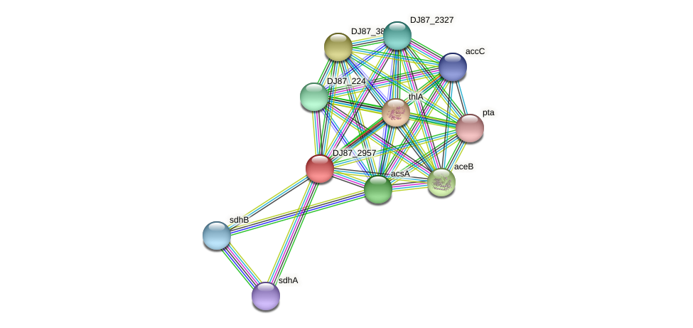 cat1 protein (Bacillus cereus) - STRING interaction network