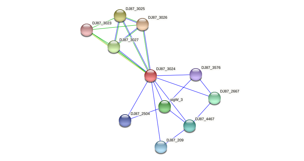 sigW_2 protein (Bacillus cereus) - STRING interaction network
