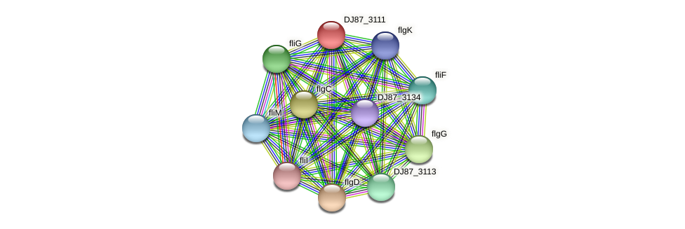 DJ87_3111 protein (Bacillus cereus) - STRING interaction network
