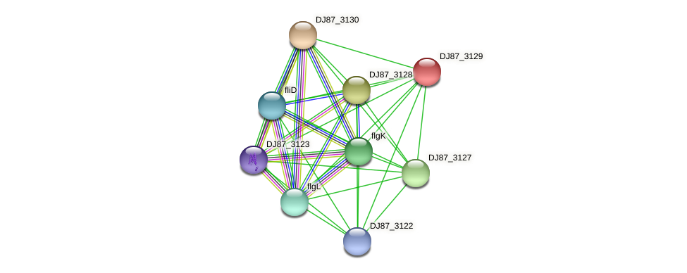 DJ87_3129 protein (Bacillus cereus) - STRING interaction network