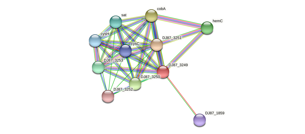 sirC_1 protein (Bacillus cereus) - STRING interaction network