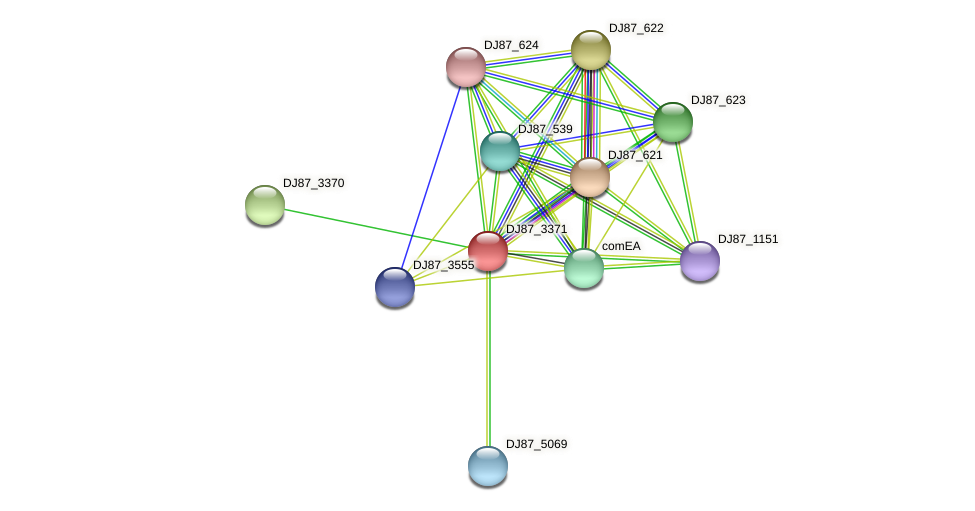 comC_1 protein (Bacillus cereus) - STRING interaction network
