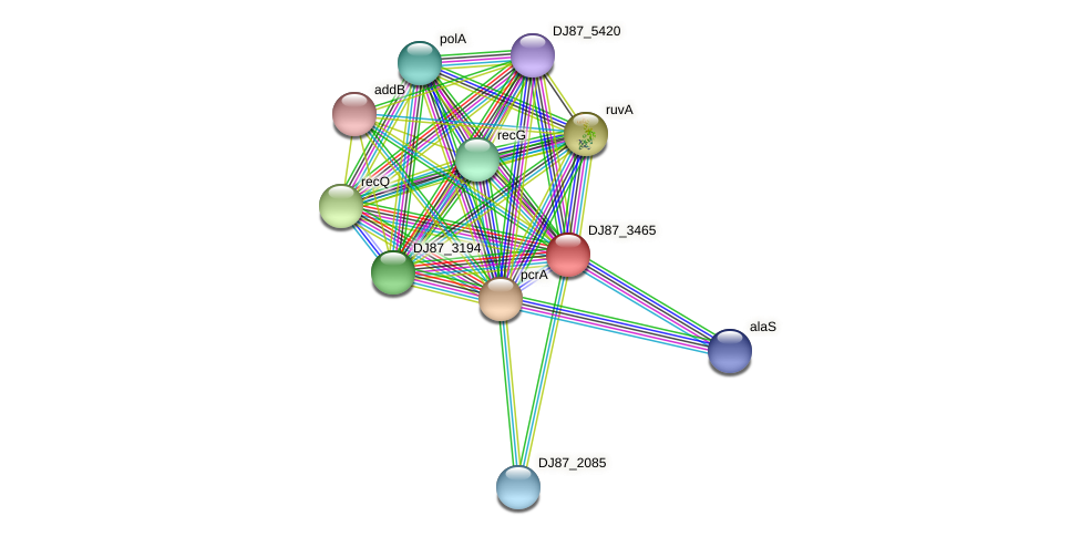 yjcD_1 protein (Bacillus cereus) - STRING interaction network
