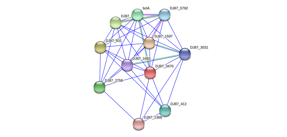 DJ87_3470 protein (Bacillus cereus) - STRING interaction network