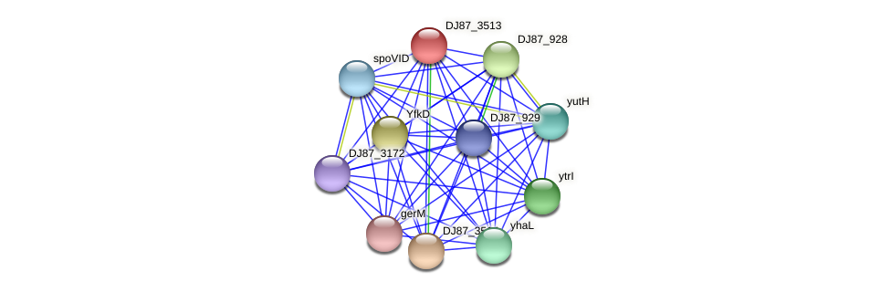 DJ87_3513 protein (Bacillus cereus) - STRING interaction network