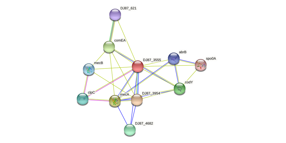 comK_2 protein (Bacillus cereus) - STRING interaction network