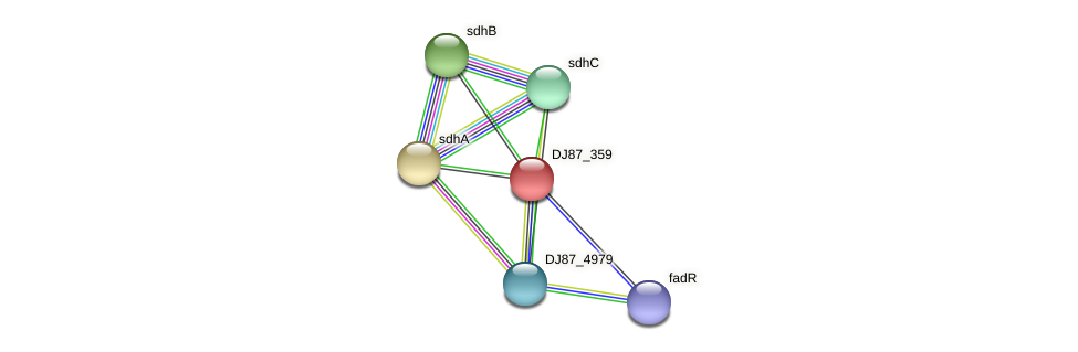 DJ87_359 protein (Bacillus cereus) - STRING interaction network