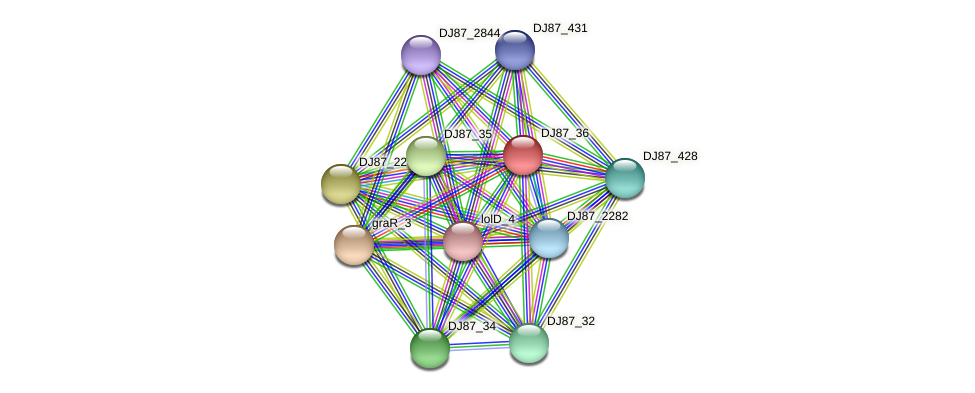 graS_2 protein (Bacillus cereus) - STRING interaction network