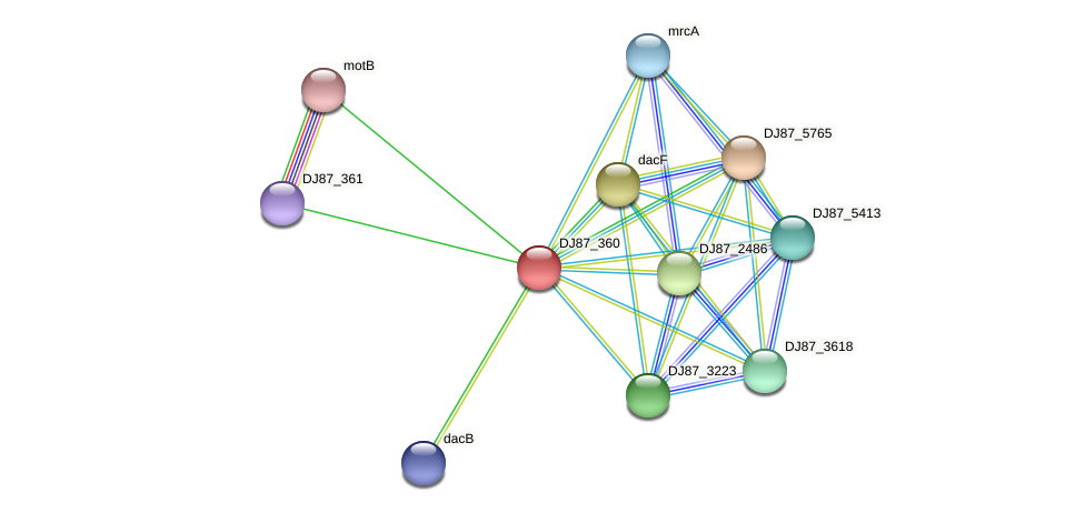vanYB_1 protein (Bacillus cereus) - STRING interaction network