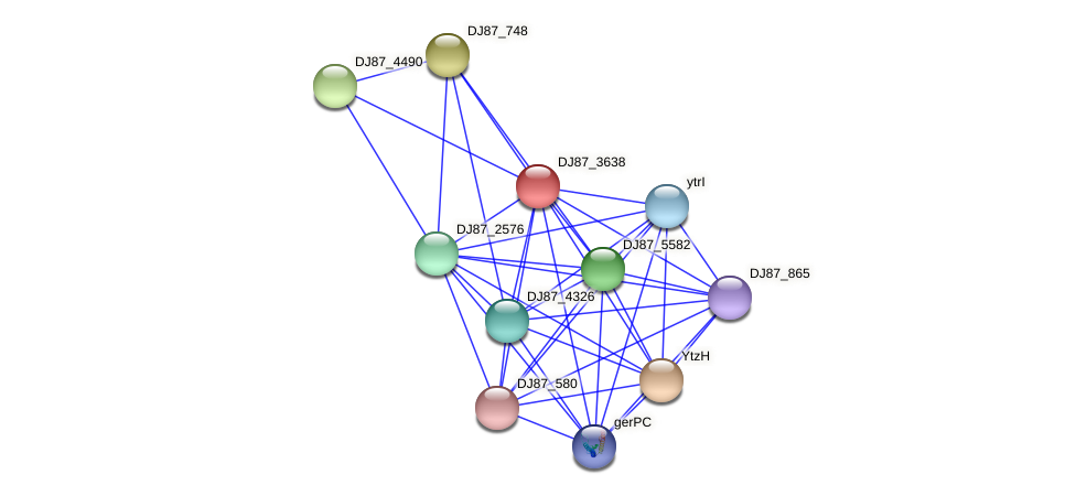 BG03_4060 protein (Bacillus cereus) - STRING interaction network
