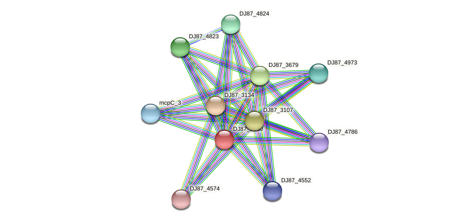 cheR_1 protein (Bacillus cereus) - STRING interaction network