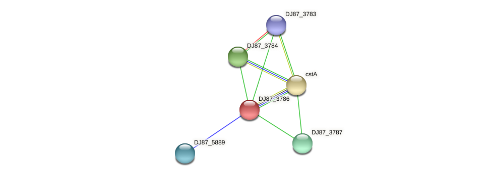 DJ87_3786 protein (Bacillus cereus) - STRING interaction network