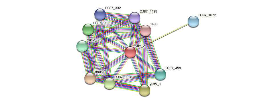 yfiY_2 protein (Bacillus cereus) - STRING interaction network