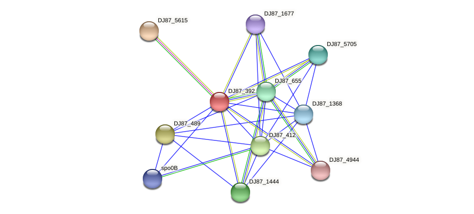 DJ87_392 protein (Bacillus cereus) - STRING interaction network