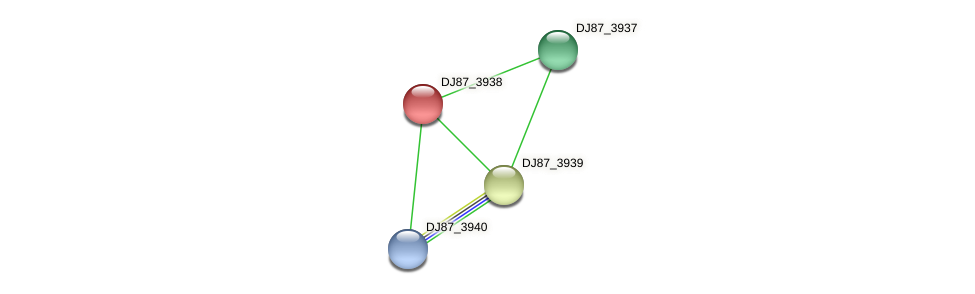 DJ87_3938 protein (Bacillus cereus) - STRING interaction network