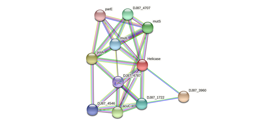 rapA_1 protein (Bacillus cereus) - STRING interaction network