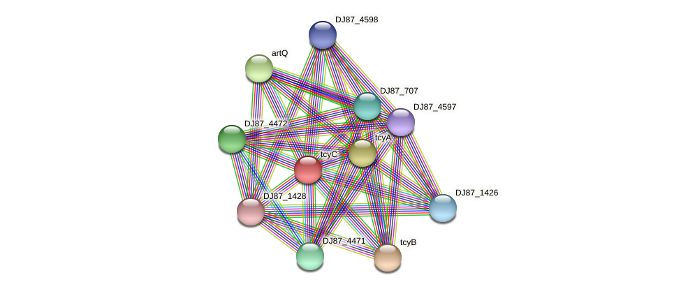 tcyC protein (Bacillus cereus) - STRING interaction network