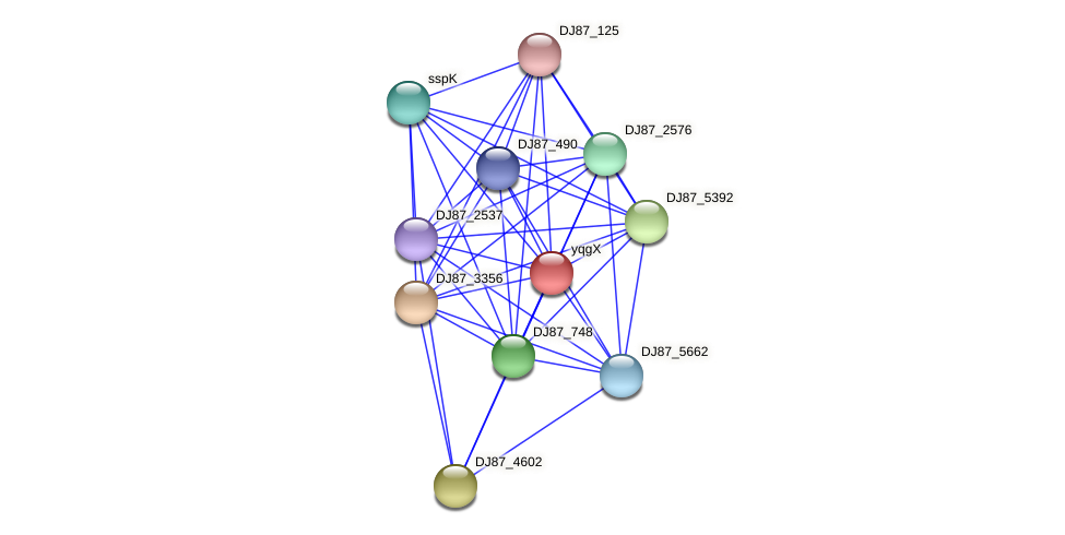 yqgX protein (Bacillus cereus) - STRING interaction network