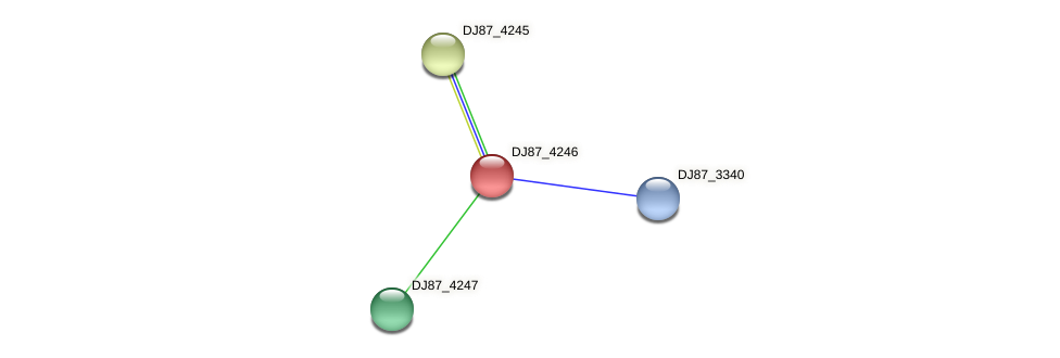 DJ87_4246 protein (Bacillus cereus) - STRING interaction network