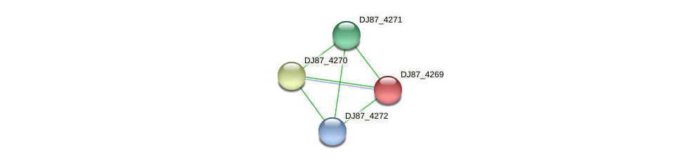 DJ87_4269 protein (Bacillus cereus) - STRING interaction network