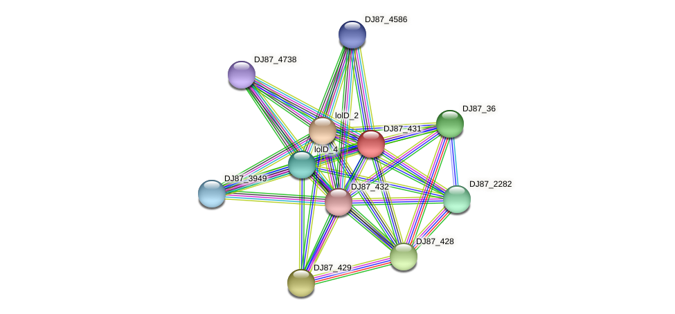 yxdM_2 protein (Bacillus cereus) - STRING interaction network