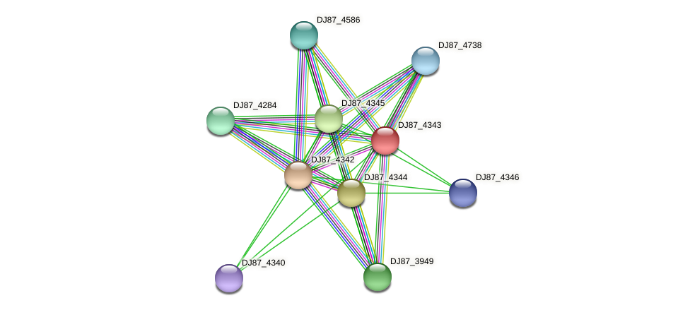 DJ87_4343 protein (Bacillus cereus) - STRING interaction network