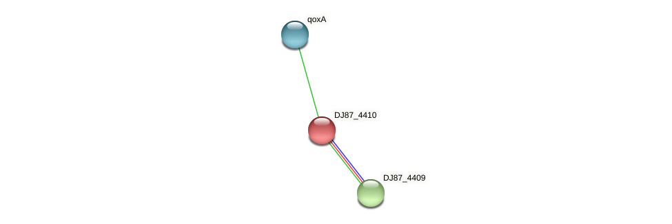 DJ87_4410 protein (Bacillus cereus) - STRING interaction network