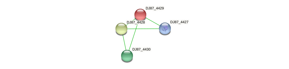 DJ87_4429 protein (Bacillus cereus) - STRING interaction network