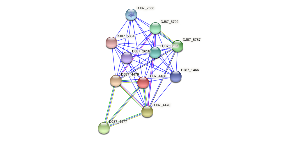 gerBC_2 protein (Bacillus cereus) - STRING interaction network
