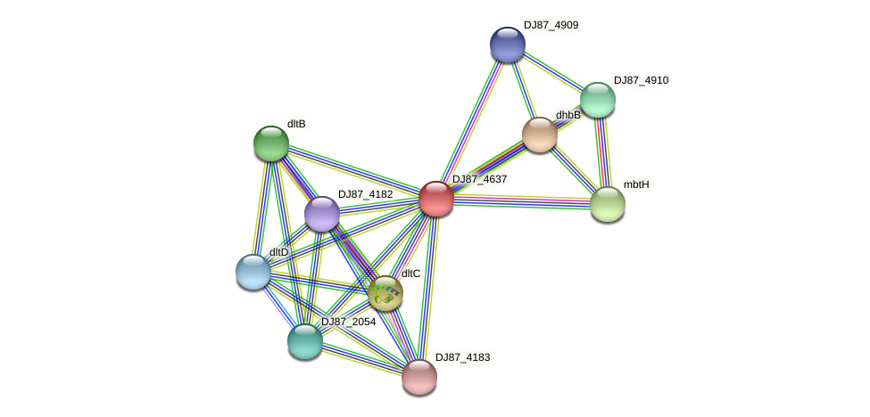 DJ87_4637 protein (Bacillus cereus) - STRING interaction network