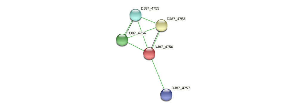 DJ87_4756 protein (Bacillus cereus) - STRING interaction network