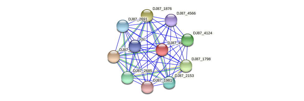 DJ87_4958 protein (Bacillus cereus) - STRING interaction network