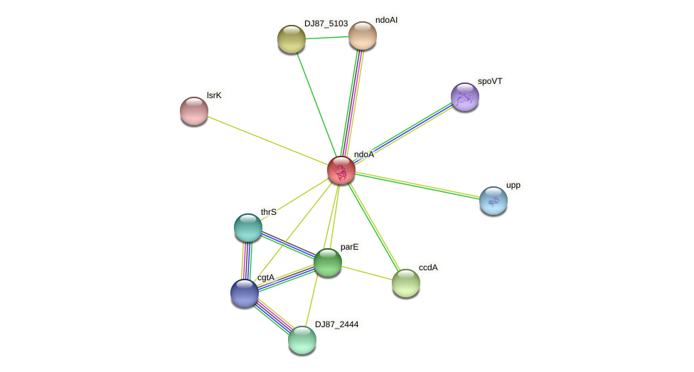 ndoA protein (Bacillus cereus) - STRING interaction network