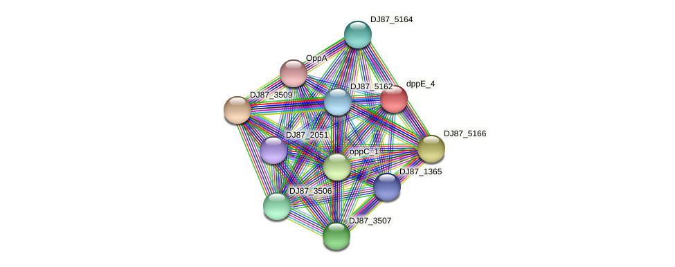dppE_6 protein (Bacillus cereus) - STRING interaction network