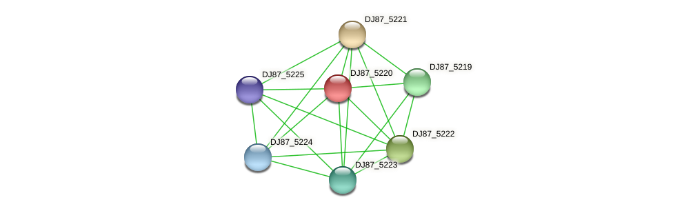 DJ87_5220 protein (Bacillus cereus) - STRING interaction network
