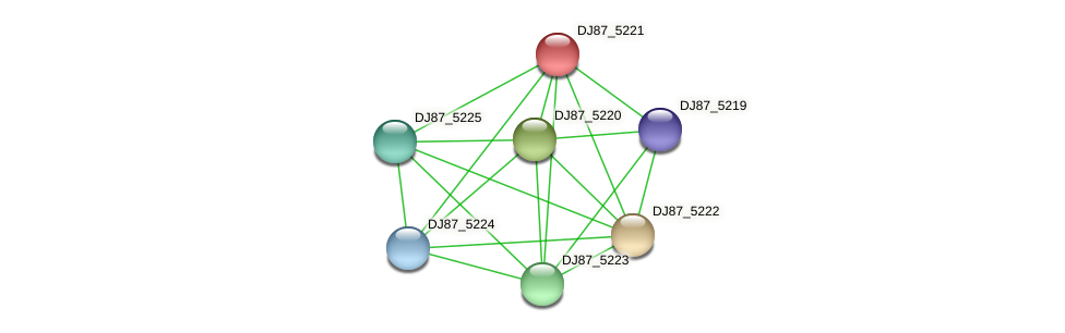 DJ87_5221 protein (Bacillus cereus) - STRING interaction network