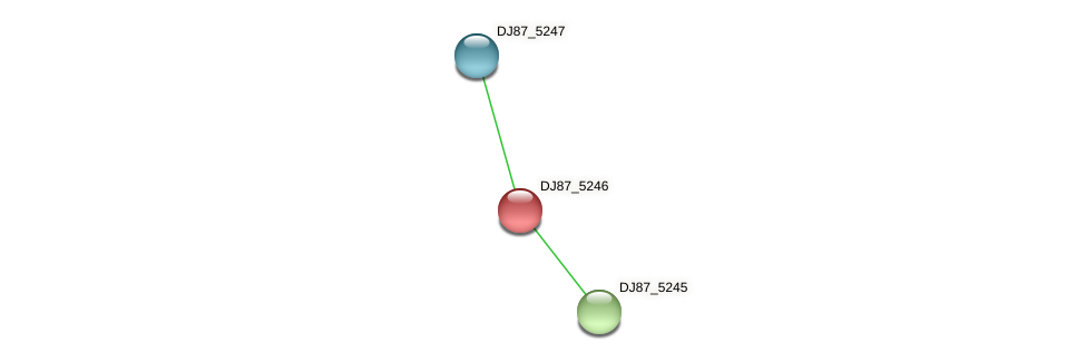 DJ87_5246 protein (Bacillus cereus) - STRING interaction network