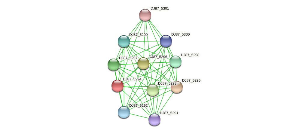 DJ87_5294 protein (Bacillus cereus) - STRING interaction network