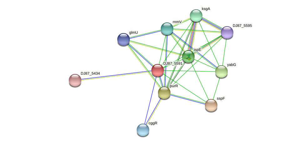 BG03_5109 protein (Bacillus cereus) - STRING interaction network