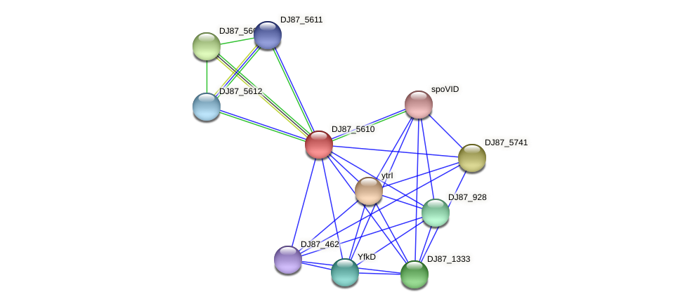 BG11_3216 protein (Bacillus cereus) - STRING interaction network