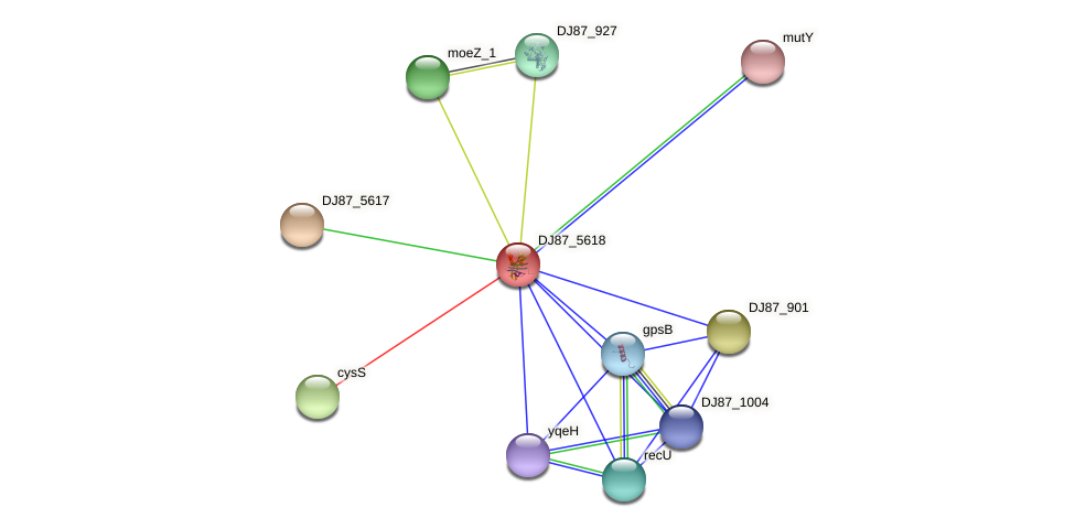BG03_4633 protein (Bacillus cereus) - STRING interaction network