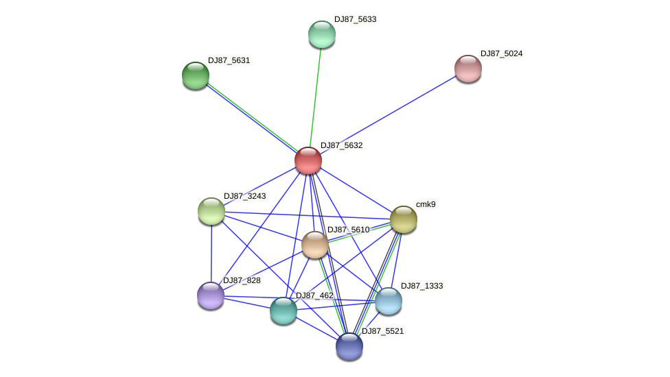 BG03_4646 protein (Bacillus cereus) - STRING interaction network