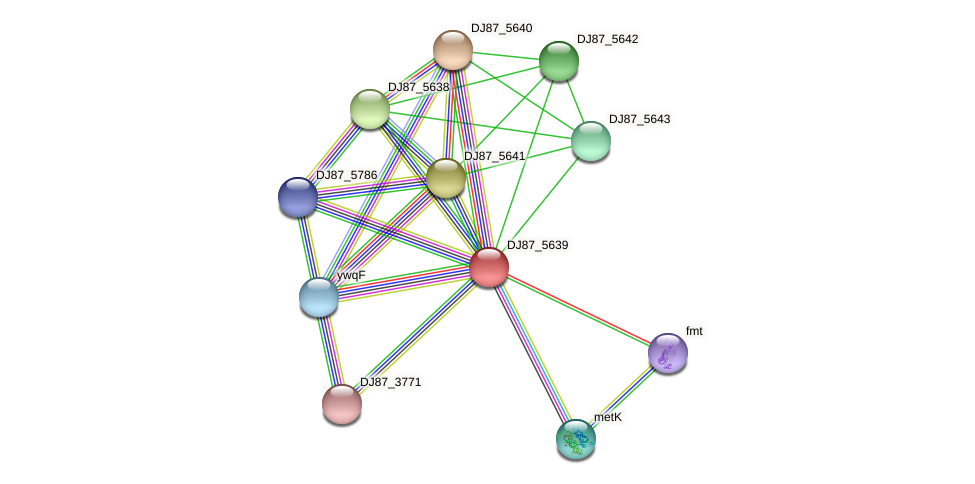 rfbB_1 protein (Bacillus cereus) - STRING interaction network